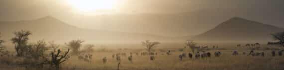 Voyageurs du monde-Destination-tanzanie