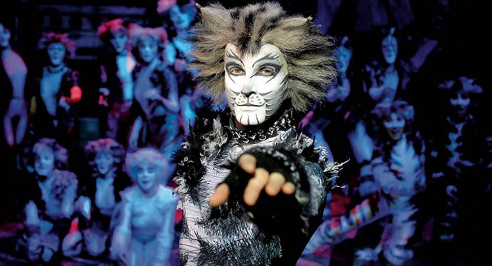 The Jellicle Cat From Cats Site Youtube Com