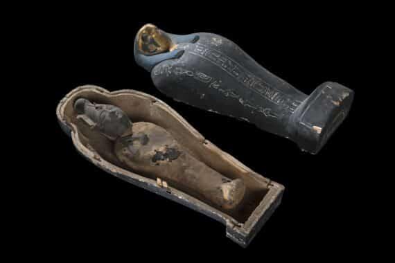 Momie d'Osiris Sokaris, Musée égyptien du Caire Statuette d'Osiris emmaillotée. Durant les mystères, deux statuettes d'Osiris étaient fabriquées : l'une d'Osiris dite végétante, constituée de limon et de grains mis à germer, illustrant ainsi le renouveau de la nature ; l'autre faite de limon, de résines et de pierres précieuses broyées, dite d'Osiris Sokaris. Les deux statuettes étaient emmaillotées selon tous les rituels requis, et déposées durant un an dans un tombeau provisoire avant d'être mises dans leur tombeau définitif à l'issue des mystères de l'année suivante. La tête de faucon du couvercle du petit sarcophage semble indiquer qu'il s'agit là d'un Osiris Sokaris. © Franck Goddio/Hilti Foundation, photo : Christoph Gerigk