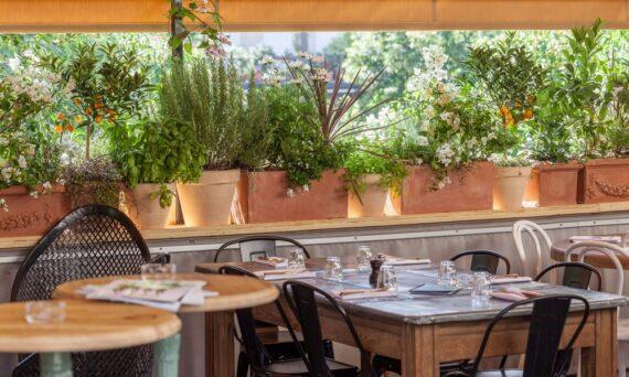 Brasserie-Auteuil-rooftop-paris-2