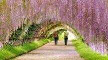 10 jardins à Paris que vous aimerez pour leur charme secret