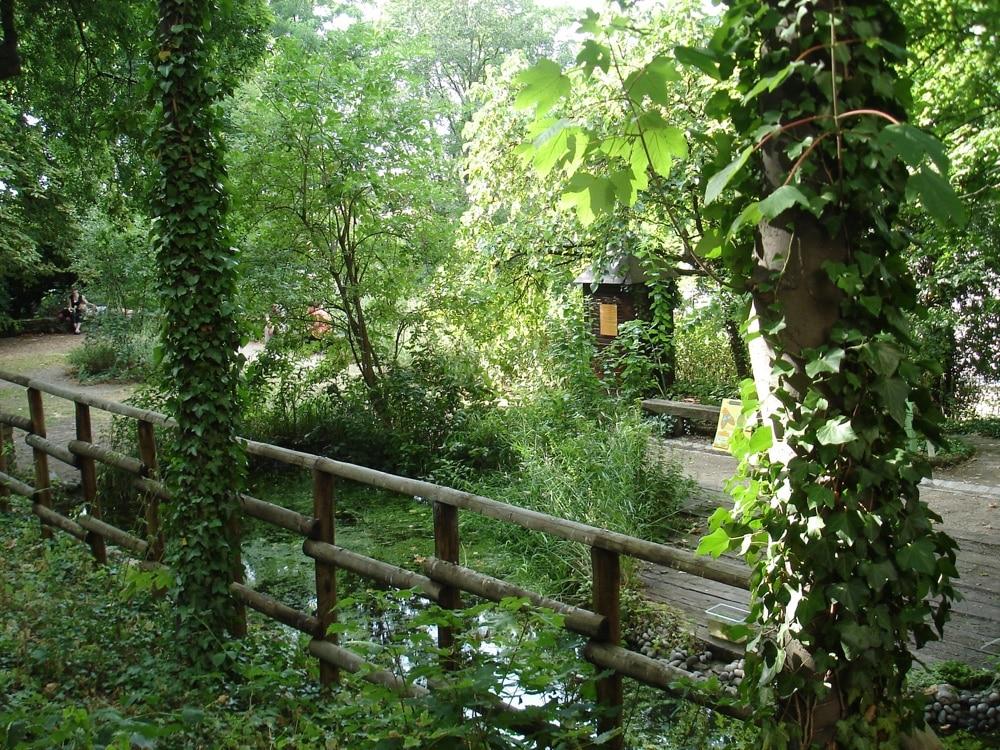 10 jardins paris que vous aimerez pour leur charme for Jardin sauvage