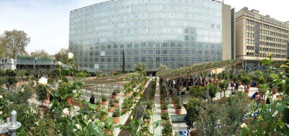 Expo Jardins d'Orient Institut du monde arabe 3