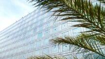 Explorez l'art des jardins à l'Institut du monde arabe
