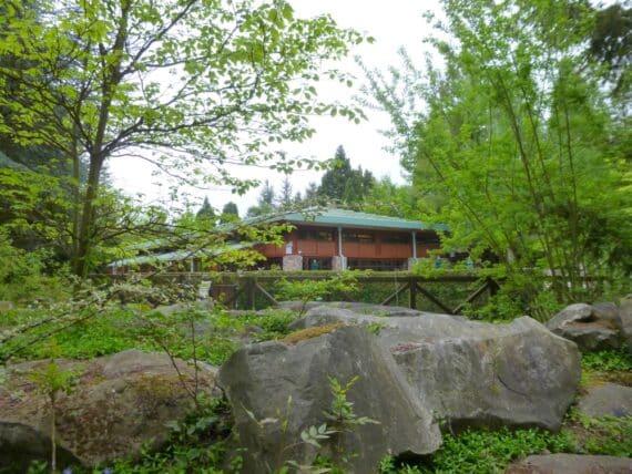 Disney's Sequoia Lodge 12