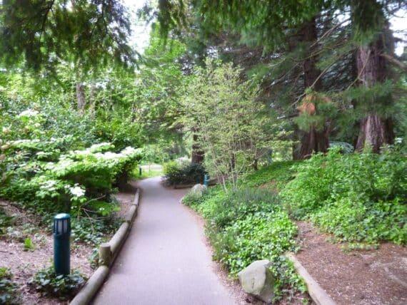 Disney's Sequoia Lodge 16