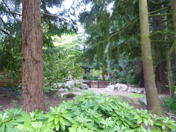 Disney's Sequoia Lodge 20
