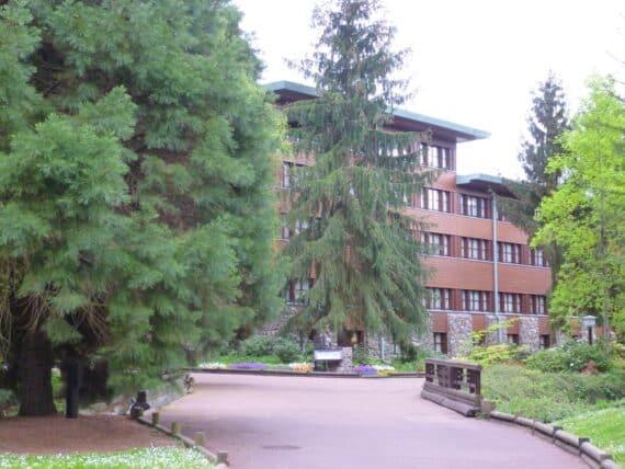 Disney's Sequoia Lodge 27