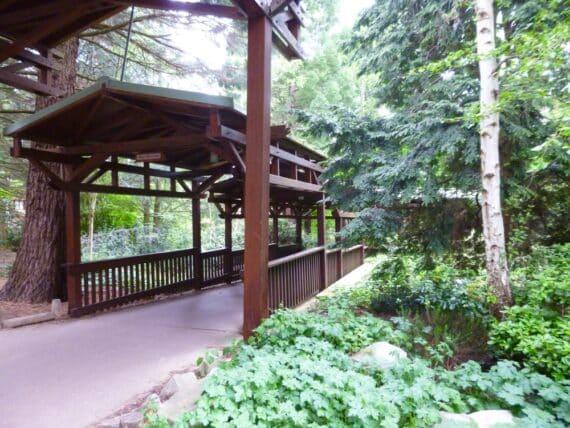Disney's Sequoia Lodge 7