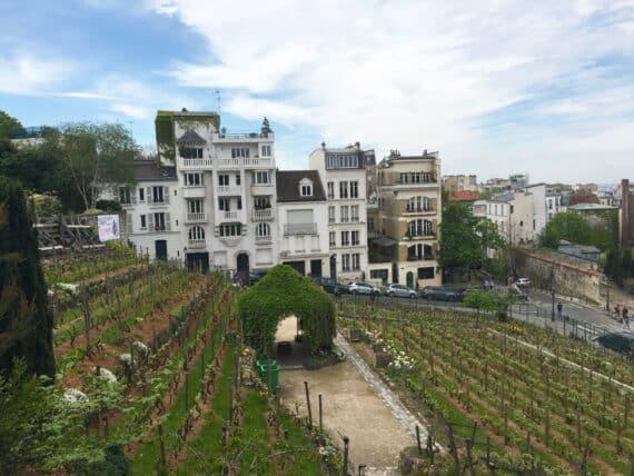 Jardins Renoir Montmartre 11