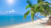 Pour vos vacances d'été, «Réservez primo» avec Look Voyage
